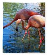 Flamingo Duo Fleece Blanket
