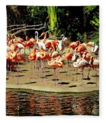 Flamingo Family Reunion Fleece Blanket