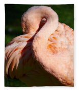Flamingo Twist Fleece Blanket