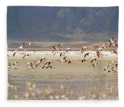 Flamingos Flying Over Water Fleece Blanket