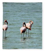 Flamingos Gathering Together Fleece Blanket