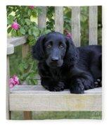 Flat-coated Retriever Puppy Fleece Blanket