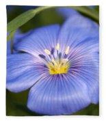 Flax Flower Fleece Blanket