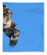 Fledgling Bald Eagle 5078 Fleece Blanket