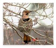 Flicker - Alabama State Bird - Attention Fleece Blanket