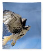Flight Of The Red Tail Fleece Blanket
