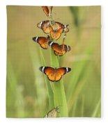 Flock Of Plain Tiger Danaus Chrysippus Fleece Blanket