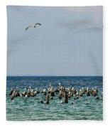 Flock Of Seagulls Fleece Blanket