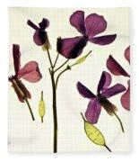 Money Plant Fleece Blanket