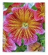 Floral Fireworks Fleece Blanket