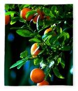 Florida Oranges Fleece Blanket