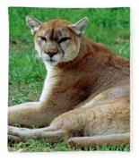Florida Panther Fleece Blanket