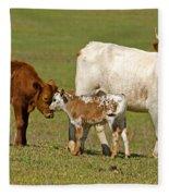 Florida Spanish Cattle Fleece Blanket