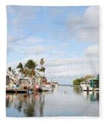 Florida Spring Day Fleece Blanket