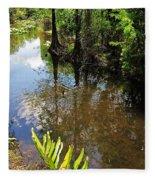 Florida Stream Fleece Blanket