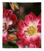Flower-cream-pink-red-rose Fleece Blanket
