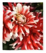 Flower-dahlia-red-white-trio Fleece Blanket