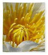 Flower Garden 68 Fleece Blanket