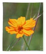 Flower Lit By The Sun's Rays Fleece Blanket