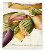 Flower Of The Banana Tree  Fleece Blanket