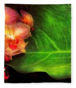 Flower - Orchid - Phalaenopsis Orchids At Rest Fleece Blanket