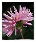 Flower-pink Dahlia-bloom Fleece Blanket