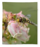 Flowerfly On Blueberry Blossom Fleece Blanket