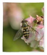 Flowerfly Pollinating Blueberry Buds Fleece Blanket