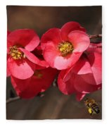 Flowering Quince With Bee Fleece Blanket
