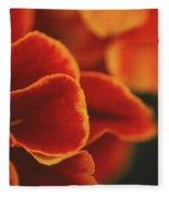 Flowers Blooming Fleece Blanket