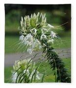 Flowers Pt. 1 Fleece Blanket