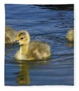 Fluffy Floaters  Fleece Blanket