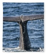 Flukes Of A Sperm Whale 2 Fleece Blanket