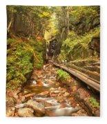 Flume Gorge Landscape Fleece Blanket