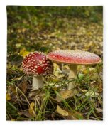 Fly Amanita Fleece Blanket