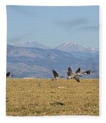 Flying Canadian Geese Colorado Rocky Mountains 1 Fleece Blanket