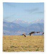 Flying Canadian Geese Rocky Mountains 2 Fleece Blanket