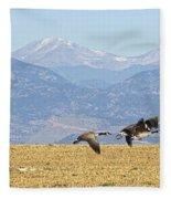 Flying Canadian Geese Rocky Mountains Panorama 2 Fleece Blanket