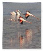 Flying Flamingos Fleece Blanket