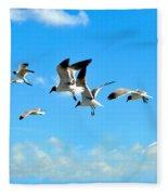 Flying Gulls Fleece Blanket
