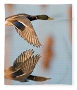 Skimming The Pond Through Cattails Fleece Blanket