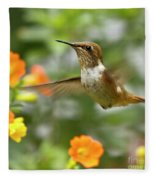 Flying Scintillant Hummingbird Fleece Blanket