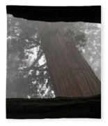 Foggy Morning Sequoias Fleece Blanket