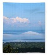 Foggy Porcupines Color Fleece Blanket