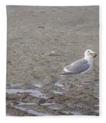 Foggy Seabird Seagulls Brunch Fleece Blanket