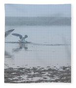 Foggy Seabirds Low Tide Buffet Fleece Blanket