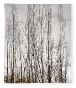 Foggy Winter Tree Fence 13271 Fleece Blanket