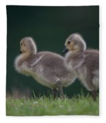 Follow Daddy Fleece Blanket