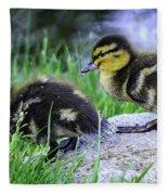 Follow The Leader Ducky Style Fleece Blanket