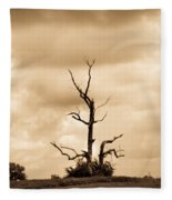 Foreboding Clouds Over Ghost Tree 1 Fleece Blanket